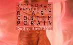 Forum Transculturel d'Art Contemporain, 7e édition - 2 au 12 avril 2015