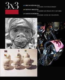 David Damoison à la Galerie Anne de Villepoix - 5 juin au 15 juillet 2010