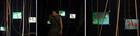 Vert d'eau - Video installation à la Triennale d'Art Urbain SUD 2010