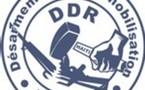 Programme National de Désarmement, Démobilisation et Réintégration (DDR)