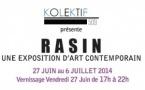 RASIN - Une exposition d'art contemporain, 27 juin au 6 juillet 2014 - Vernissage le 27 juin, de 17h à 22h, Villa Kalewès